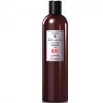 Egomania Richair Sleek Hair Shampoo - Шампунь для гладкости и блеска волос, 400 мл