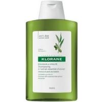 Купить Klorane Shampooing Extrait Essentiel Olivier - Шампунь для волос с экстрактом оливы, 200 мл