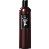 Купить Egomania Richair Shampoo Silver Blond - Оттеночный шампунь для платиновых оттенков блонд с кератином, 400 мл, Egomania Professional