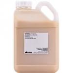 Davines Essential Haircare Nounou Shampoo - Шампунь питательный для уплотнения волос, 5000 мл