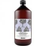 Davines New Natural Tech Calming Shampoo - Шампунь успокаивающий для чувствительной кожи головы, 1000 мл