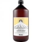 Davines New Natural Tech Purifying Shampoo - Шампунь очищающий против перхоти, 1000 мл