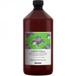 Davines New Natural Tech Renewing Shampoo - Шампунь обновляющий, 1000 мл