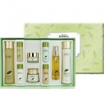 Фото Deoproce Premium Greentea Total Solution 5 Set - Набор для лица уходовый, 2*150мл, 60мл, 50мл, 5*30мл