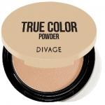 Фото Divage Compact Powder True Color - Пудра компактная, тон № 06, кремовый, 9 гр