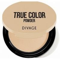 Divage Compact Powder True Color - Пудра компактная, тон 01