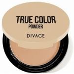 Фото Divage Compact Powder True Color - Пудра компактная, тон 04