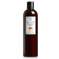 Купить Egomania Professional Richair Color protection Shampoo Macadamia Oil - Шампунь Защита Цвета, 400 мл