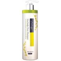 Купить JPS Labay Ivia Scalp Clinic Shampoo - Шампунь с экстрактом плюща, 500 мл