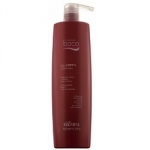 Kaaral Baco Colorpro Shampoo - Шампунь с гидролизатами шелка и кератином, 1000 мл
