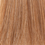 Фото L'Oreal Professionnel Inoa - Краска для волос Иноа 8.3 Светлый блондин золотистый 60 мл