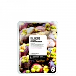 Фото Superfood Salad Facial Sheet Mask Mangosteen Balancing - Тканевая маска «Мангостин - Баланс», 25 мл