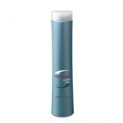 Periche Care Shampoo repair - Шампунь восстанавливающий 250 мл