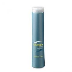 Periche Care Shampoo platine hair - Шампунь для блондированных волос 250 мл