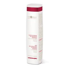 Hair Company Double Action Deep Reconstruction Nourishing Shampoo - Специальный шампунь восстанавливающий питательный 250 мл