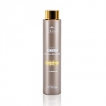 Hair Company Professional Inimitable Style Illuminating Shampoo - Шампунь придающий блеск, 250мл
