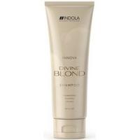 Indola Professional Innova Divine Blond Shampoo - Восстанавливающий шампунь для светлых волос, 250 млIndola Professional Innova Divine Blond Shampoo - Восстанавливающий шампунь для светлых волос, 250 мл купить по низкой цене с доставкой по Москве и регионам в интернет-магазине ProfessionalHair.<br>