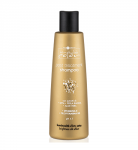 Hair Company Inimitable Color Post Treatment Shampoo - Шампунь стабилизирующий 250 мл